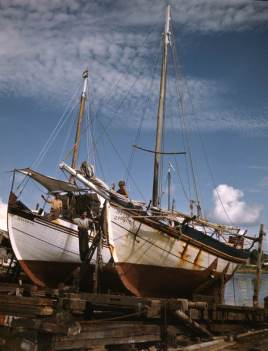 Greek_sponge_boats_on_ways-_Tarpon_Springs,_Florida_(8516004390)